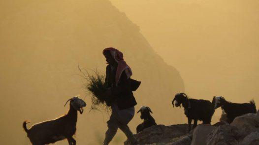 Ecotourism in Jordan: Interview with A Piece of Jordan