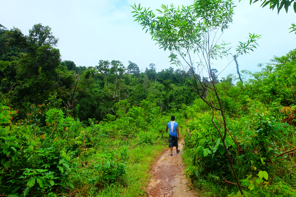 inland-hike