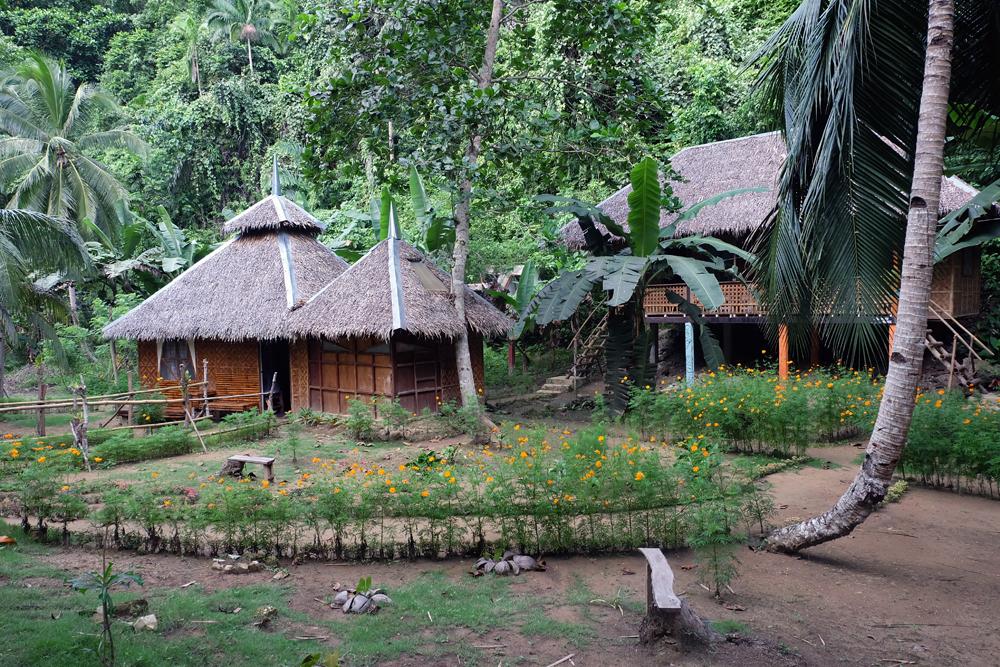 nuts-huts