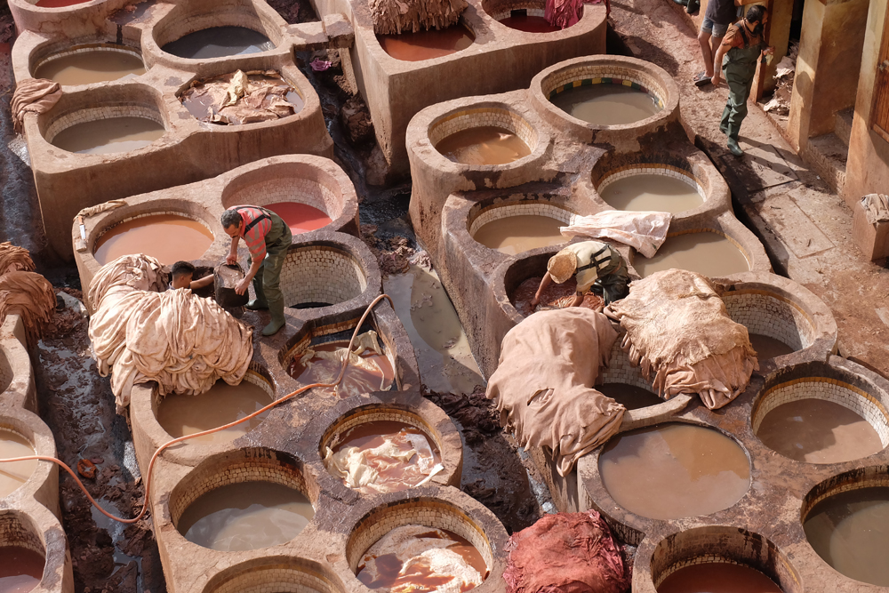 The leather tannery in Fes while on my Morocco trip