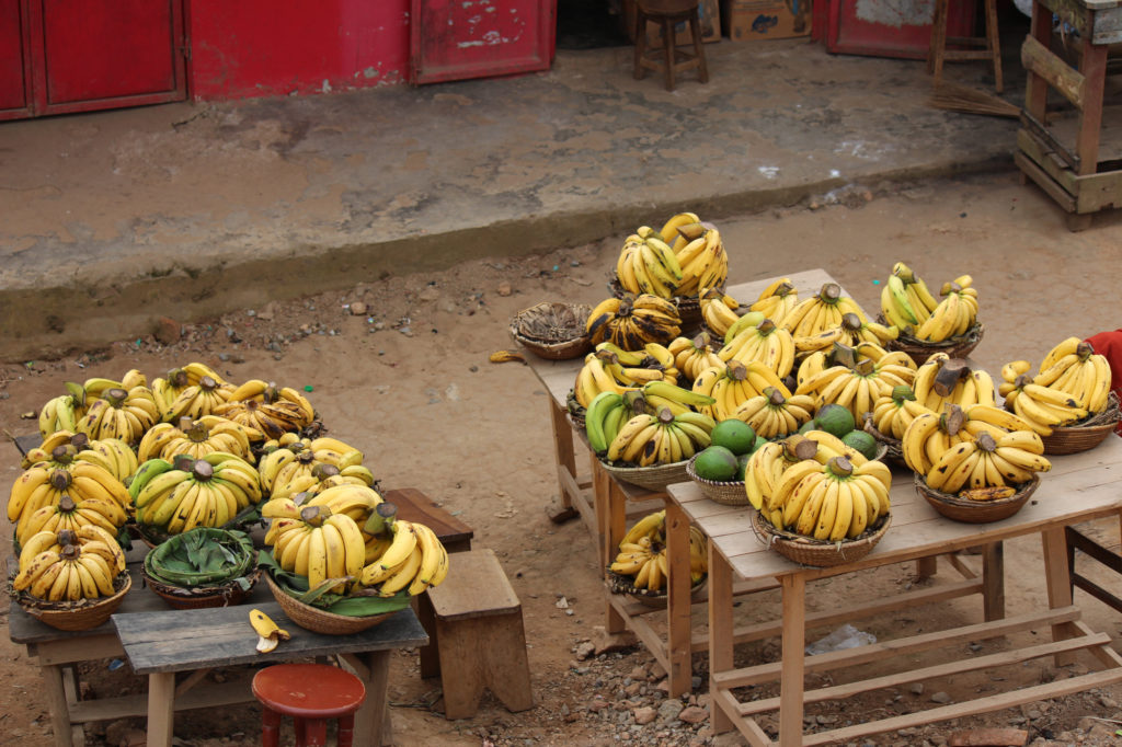 Bunches of bananas at a local street vender in Uganda