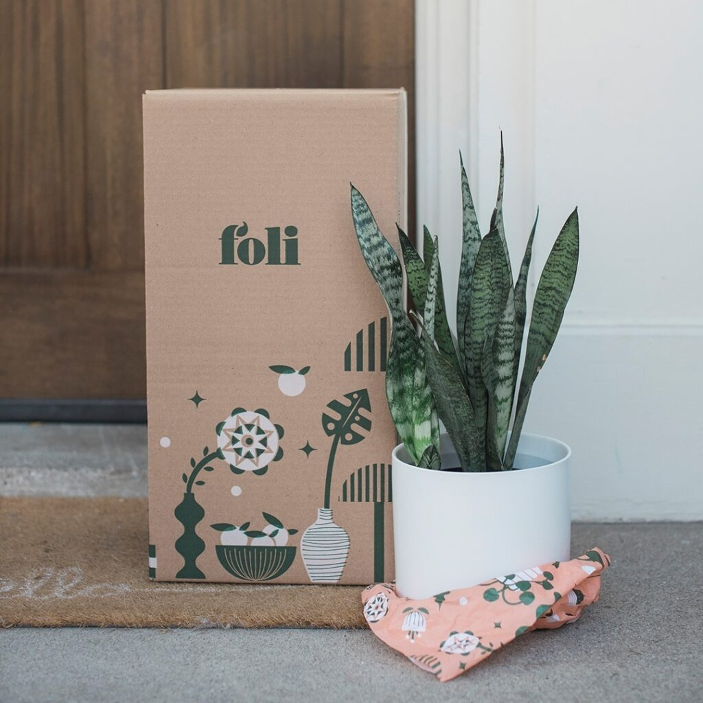 Shop local with Canadian-business, Foli, a plant-delivery service.